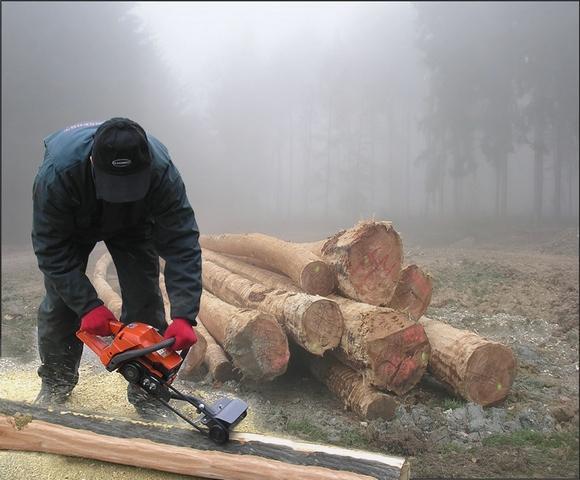 очистка дерева от коры