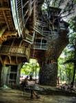 Огромный дом на дереве