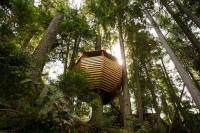 Небольшой уютный дом на дереве