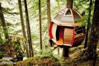 Дом на дереве фото инерьера