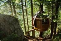 Дом на дереве фото с наружи