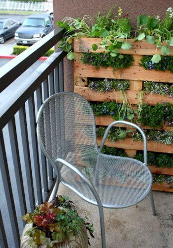 Сад из паллет на балконе