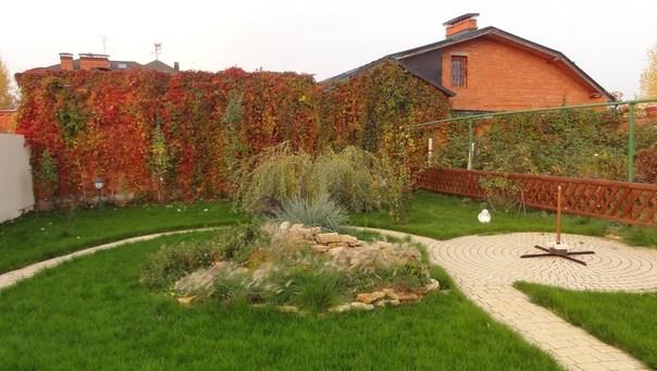 Садовая дорожка огибает элементы ландшафтного дизайна