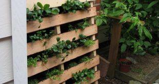 создание сада из палеты